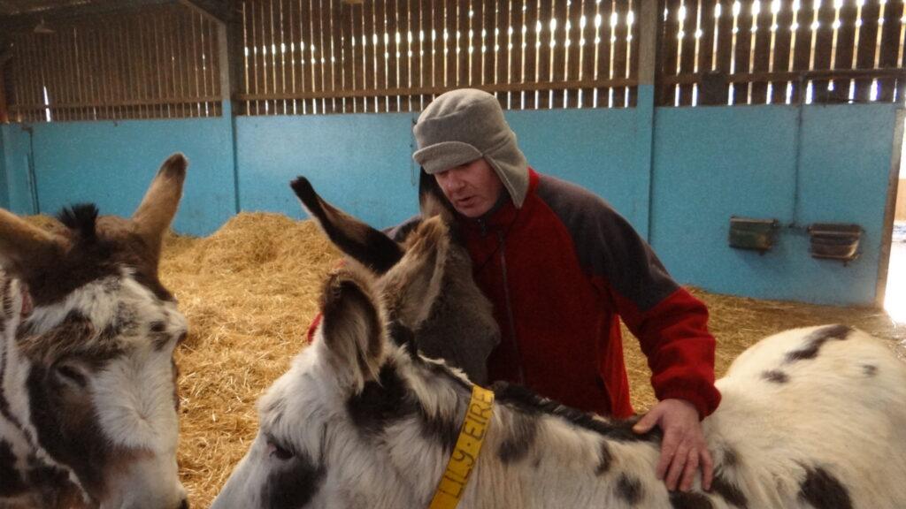 duncan at donkey sanctuary