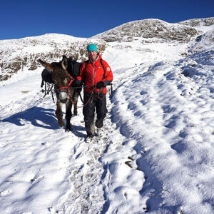 guided trekking with donkey