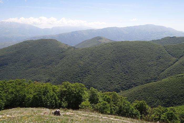 mt blanc mountain scenery